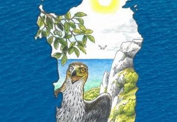 Scopri la storia dell'aquila di Bonelli con un fumetto